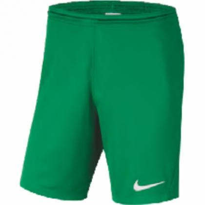 MN Sport Koszulka Nike PARK DERBY II 894312 100